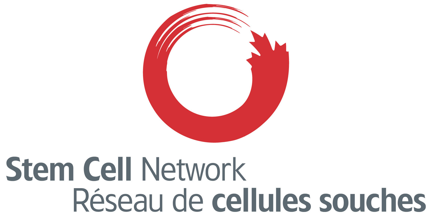 Stem Cell Network logo