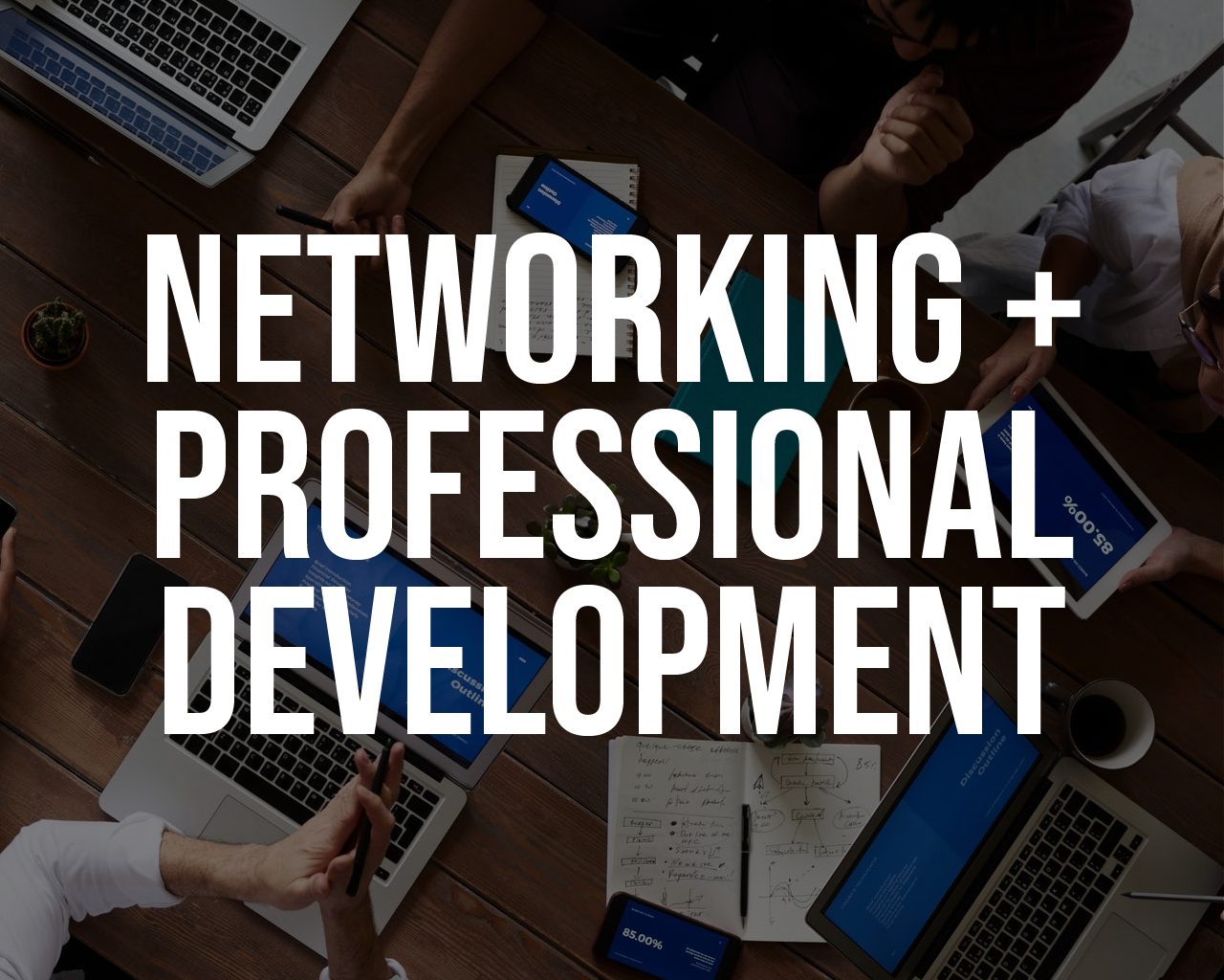 Networking and Professional Development