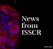 News from ISSCR for Website Tile