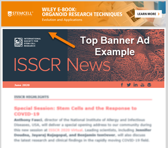 Top Banner Advertisement Example