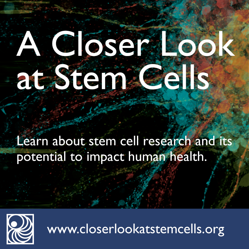 stem cell research paper hook
