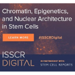 ISSCR Digital Series on Nuclear Architecture and Stem Cells
