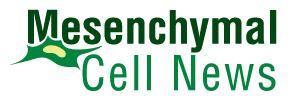 Mesenchymal Cell News